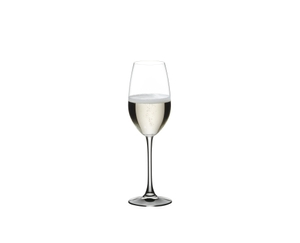 NACHTMANN ViVino Champagne Glass filled with a drink on a white background