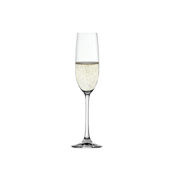 SPIEGELAU Salute Champagne Glass filled with a drink on a white background