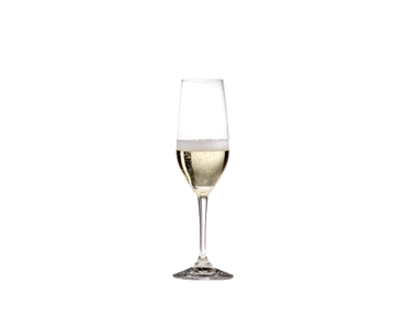 RIEDEL Ouverture Restaurant Champagne Glass filled with a drink on a white background