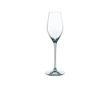 NACHTMANN Supreme Champagne Glass con fondo blanco