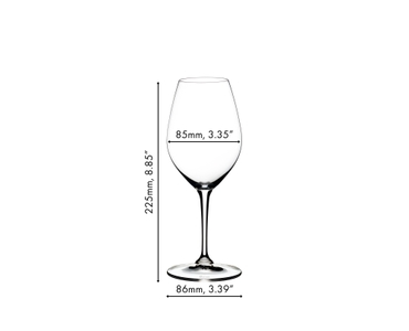 An unfilled RIEDEL Vinum Champagne Wine Glass on white background with product dimensions