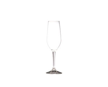 RIEDEL Ouverture Restaurant Champagne Glass on a white background