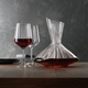 An unfilled Spiegelau Lifestyle Decanter and two unfilled Spiegelau Lifestyle Red Wine Glasses side by side on white background