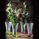 Sample packaging of a NACHTMANN Spring Vase Lime two pack