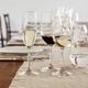RIEDEL Degustazione Red Wine in use