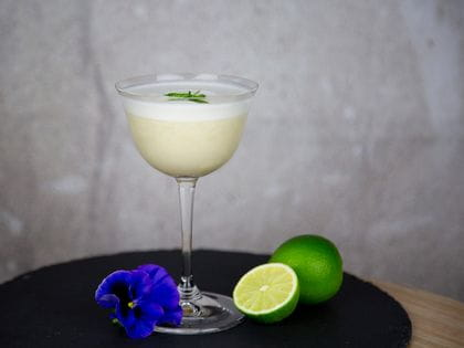 Pisco Sour served in a RIEDEL Drink Specific Glassware Sour glass