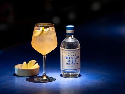 Nachtmann Gin & Tonic with Four Pillars Navy Strength Gin