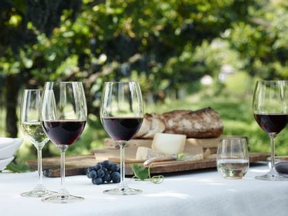 Filled RIEDEL Wine Riesling/Zinfandel and Cabernet/Merlot glasses on an outdoor picnic table