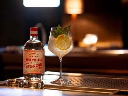 Nachtmann Gin & Tonic with Four Pillars Spiced Negroni Gin