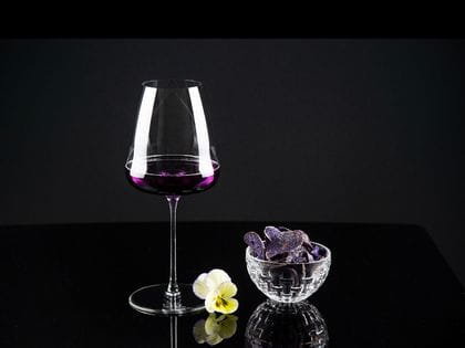 RIEDEL Champagne Wine Glass filled with Violet Champagne
