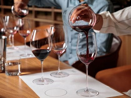 RIEDEL Red Wine Glass Tasting