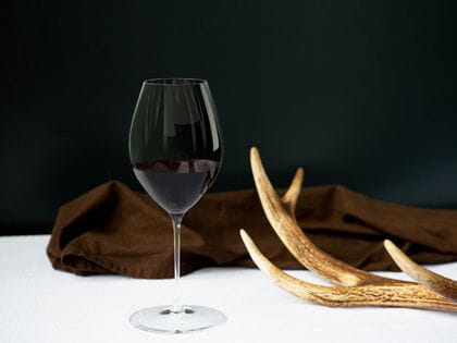 RIEDEL Performance Syrah/Shiraz glass