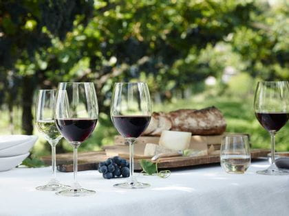 Red and white wine RIEDEL glasses sitting on an outdoor table