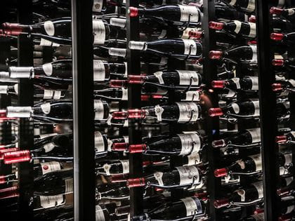 Bottles lined up in a wine cellar